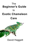 The Beginners Guide To Exotic Chameleon Care