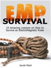 Emp Survival 33 Amazing Lessons On How To Survive An ElectroMagnetic Pulse