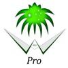 Saudi Gong Pro