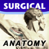 Surgical Anatomy - Student Edition