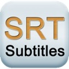 SRT Viewer & Editor visualhub srt