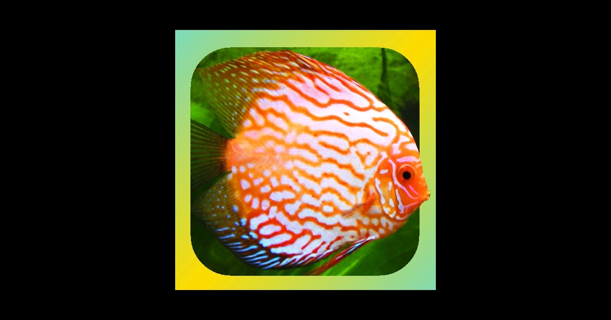 Tropical fish encyclopedia on the app store for 1 fish 2 fish store