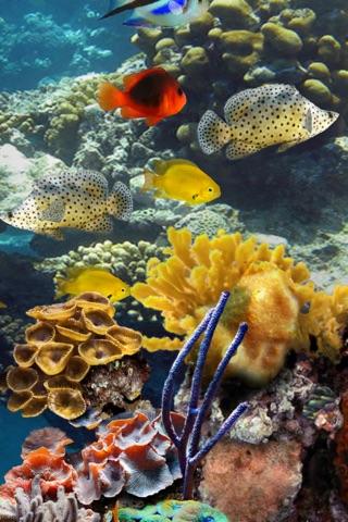 MyReef 3D Aquarium Screenshot 2