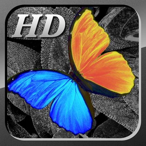 照片编辑工具:PhotoWizard-HD Photo Editor【上百特效】