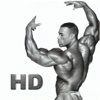 Bodybuilders Collection HD