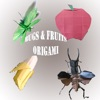 Fruits & Bugs Origami