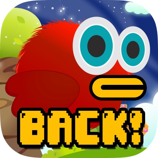 Dumb Bird iOS App