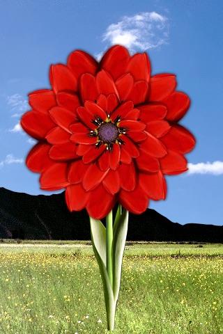 Dream Flower screenshot 2