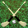 Without The Games - Hurling artwork