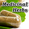 Medicinal Herbs Encyclopedia