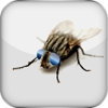 JumiFly - A fake fly turns into an addictive fun prank to play on the PC desktop / background