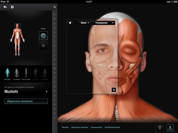 PONS Anatomie in Bildern Englisch-Deutsch by QA International