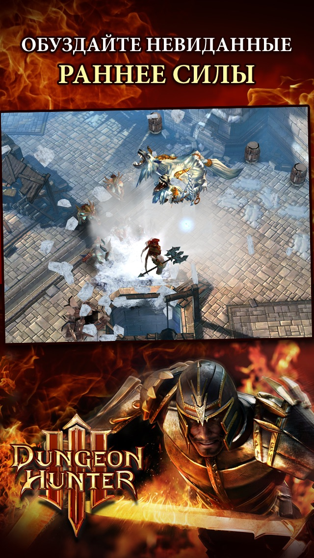Dungeon Hunter 3 Скриншоты3