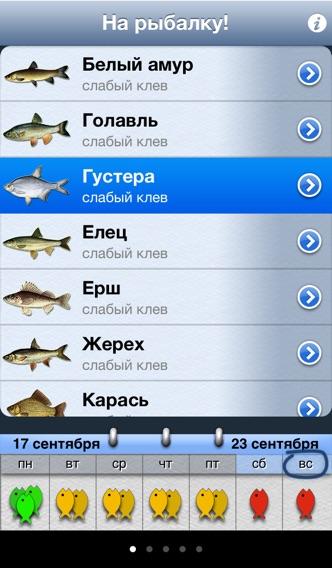 На рыбалку! Screenshot
