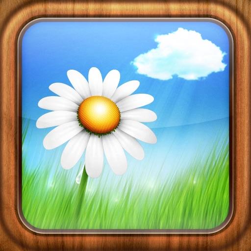 宁静的心:Serenity ~ the relaxation app【心灵治愈系】