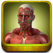 Muscle Trigger Points - Visually Interactive