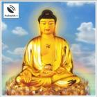 Cốt Lõi Của Cội Bồ Đề - Sách Nói Phật Giáo - Cot Loi Cua Coi Bo De icon
