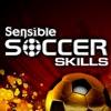 Sensible Soccer Skills