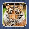 Jungle puzzle - jigsaw puzzle for kids
