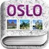 Libro de Oslo