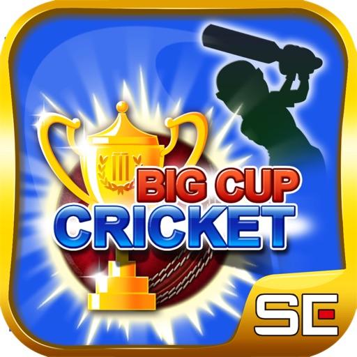 Big Cup Cricket iOS App