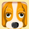 Find Animals - the Preschool Learning Game