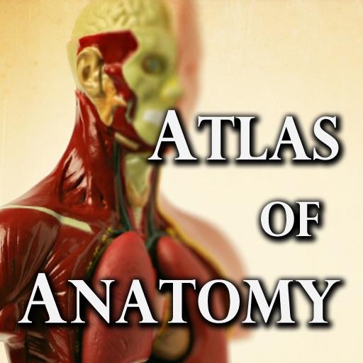 Greys anatomy atlas