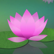 Learn to Meditate - Meditation Without Borders icon