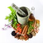 موسوعة الأعشاب الطبية icon
