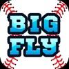 Big Fly Baseball