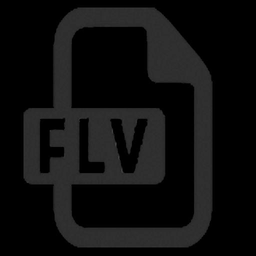 FLV Converter Expert