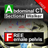 Abdominal CT Sectional Walker Lite