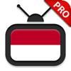 TV Indonesia HD Pro - menonton TV Online
