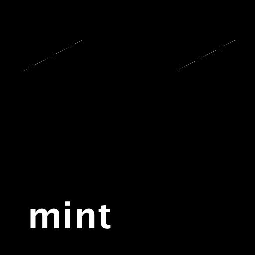 민트블랙박스