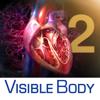 3D Heart & Circulatory Premium 2 (3D-Herz- & Kreislauf Premium 2)
