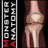 Monster Anatomy - Lower Limb