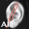 Ear Werx Premium Edition
