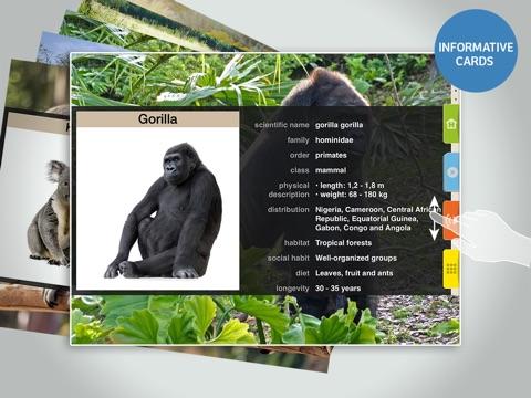 Screenshot #3 for Animals 100 - Real Animals