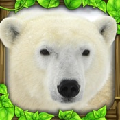 Polar Bear Simulator Hack Resources (Android/iOS) proof