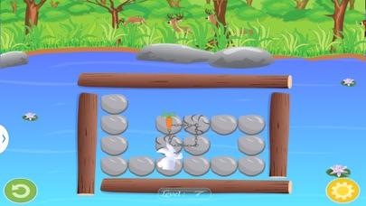 Bunny Puzzle-2