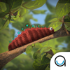 Caterpillar: TopIQ Story Book For Children in Preschool to Kindergarten