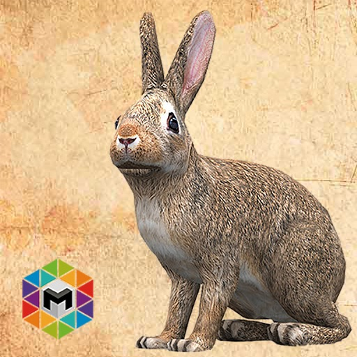 Rabbit Simulator iOS App