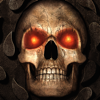 Overhaul Games - Baldur's Gate: Enhanced Edition artwork