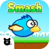 Fly Smash - Birds fly, squishy bird, smash them