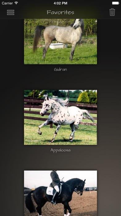 Horse Breeds Guide Screenshot
