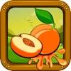 First Fruit Book