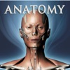 DS ANATOMY HEAD & NECK MUSCULOSKELETAL SYSTEM (AppStore Link)