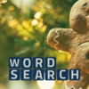 Wordsearch Revealer Christmas