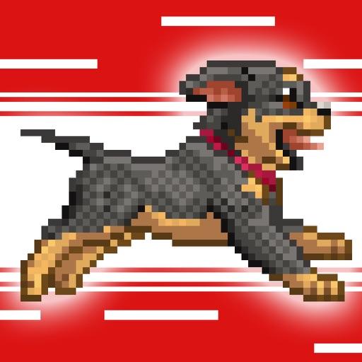 RooRoo Rush iOS App
