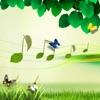 轻音乐 - 钢琴古筝葫芦丝等经典弹奏曲目